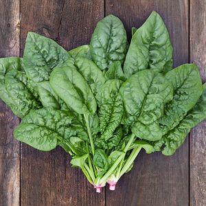 Spinach Bloomsdale Long Standing Organic Seeds