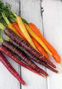 Rainbow Carrot Organic Heirloom Seeds